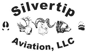 Silvertip Aviation